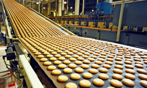 Manufacturing Cookies in Factory